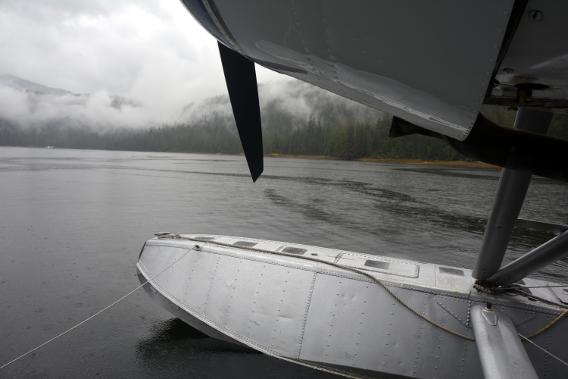 DeHavilland Beaver in Misty Fjords