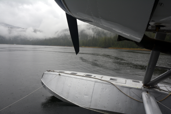DeHavilland Beaver in Misty Fjords