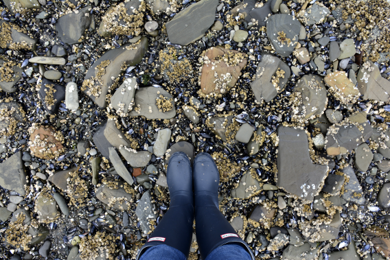 Hunter Wellies at Icy Strait Point
