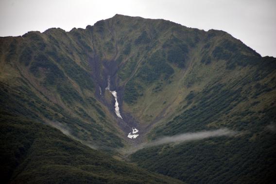 Forest Mountain Alaska