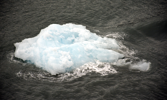 Hubbard Glacier Iceberg