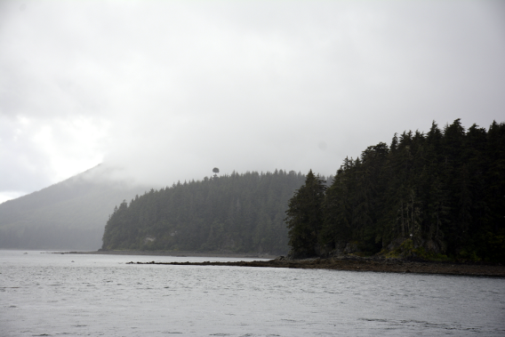 Icy Strait Point Forest from Boat