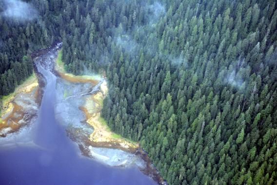 Misty Fjords River Bed