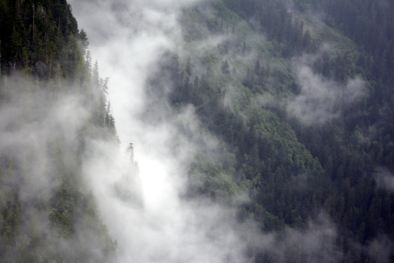 Misty Mountains near Ketchikan