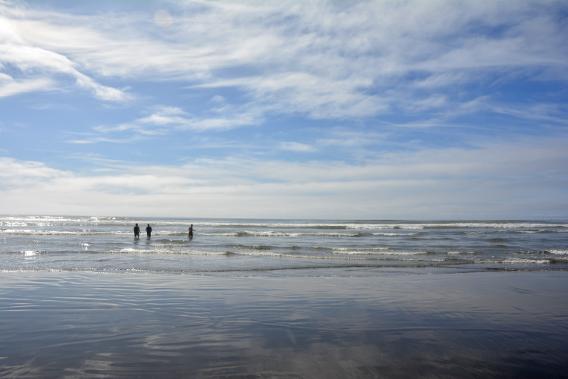 Ocean Shore WA
