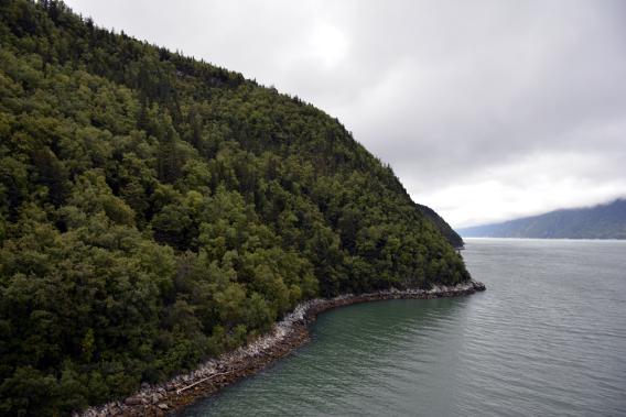 Skagway Alaska Shore