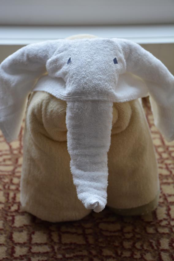 Celebrity Cruise Elephant Towel