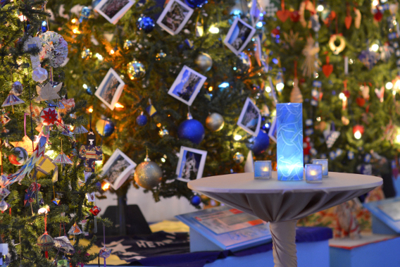 Museum of Science and Industry's Christmas Trees 2014