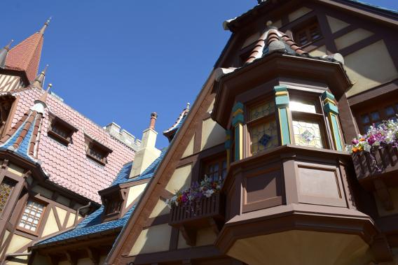 Disneyworld's Magic Kingdom