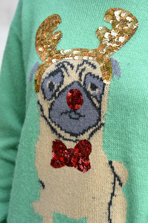 Christmas Pug Sweater 11