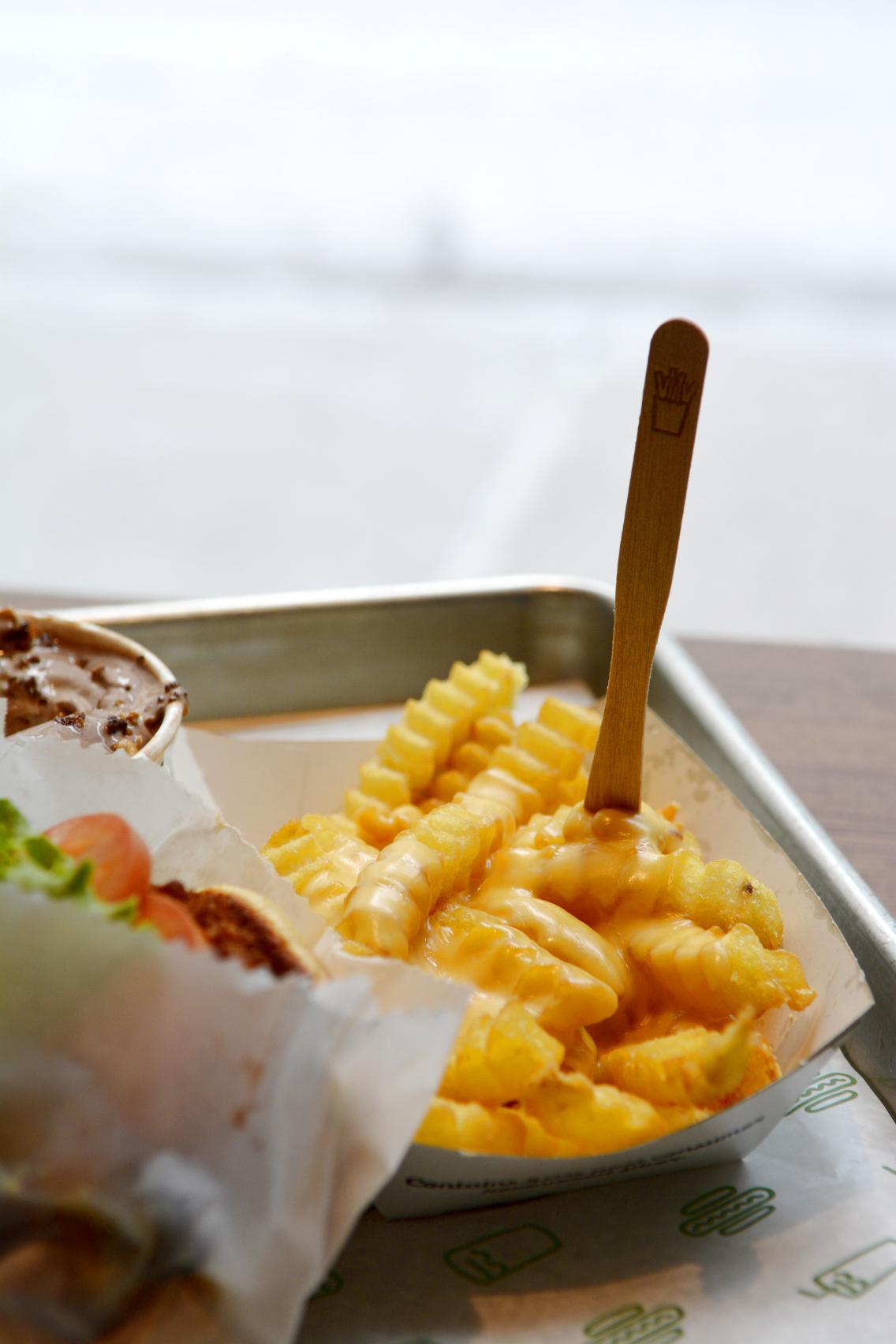 Shake Shack Cheese Fries 2