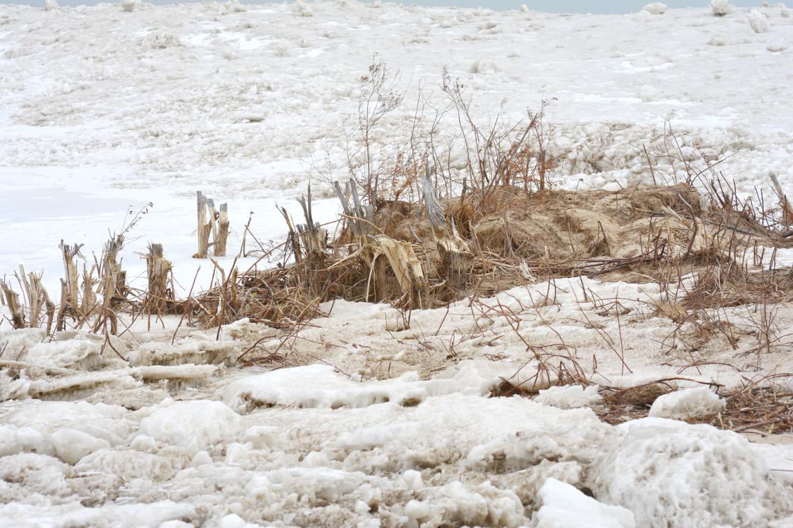 Winter at North Avenue Beach 18