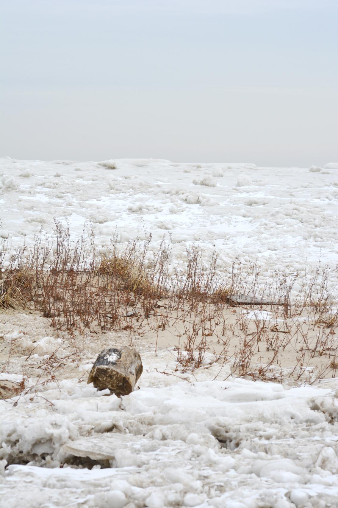 Winter at North Avenue Beach 21