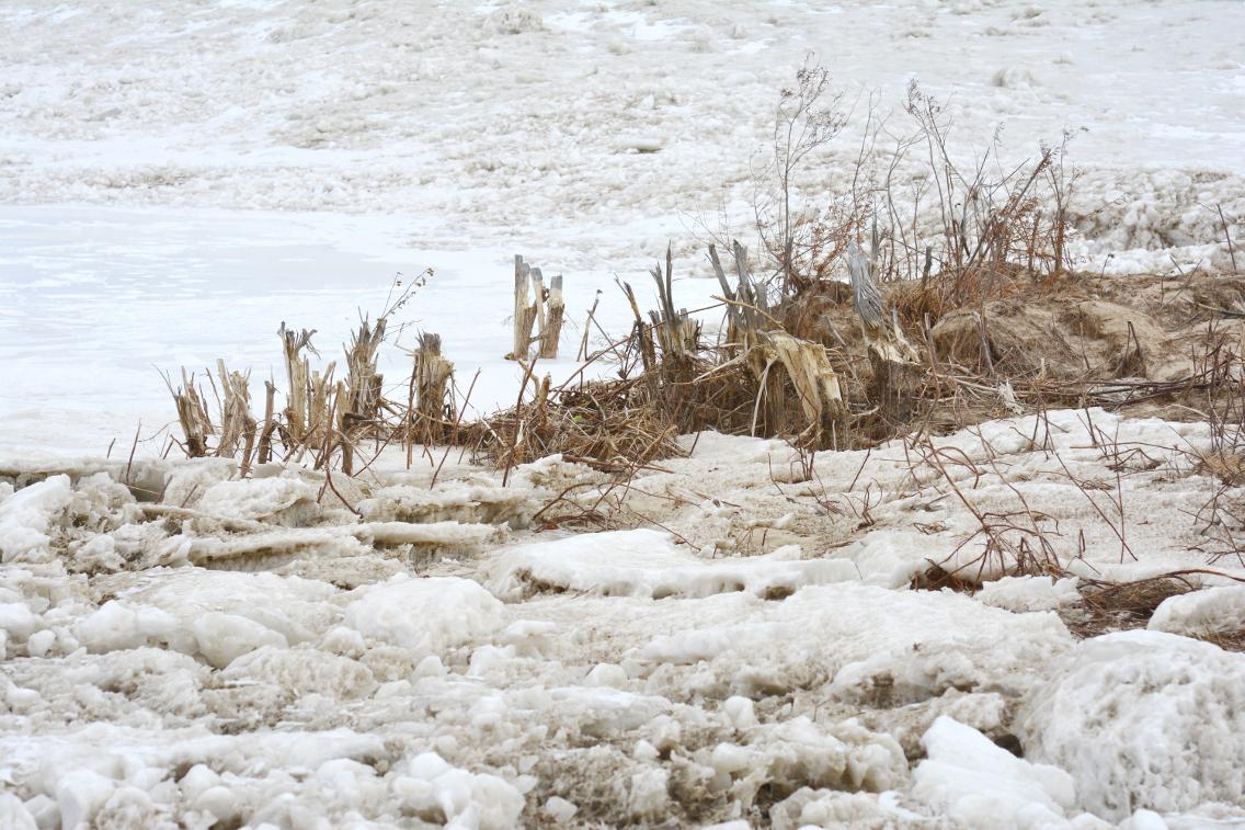 Winter at North Avenue Beach 32