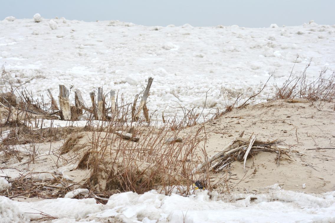 Winter at North Avenue Beach 33