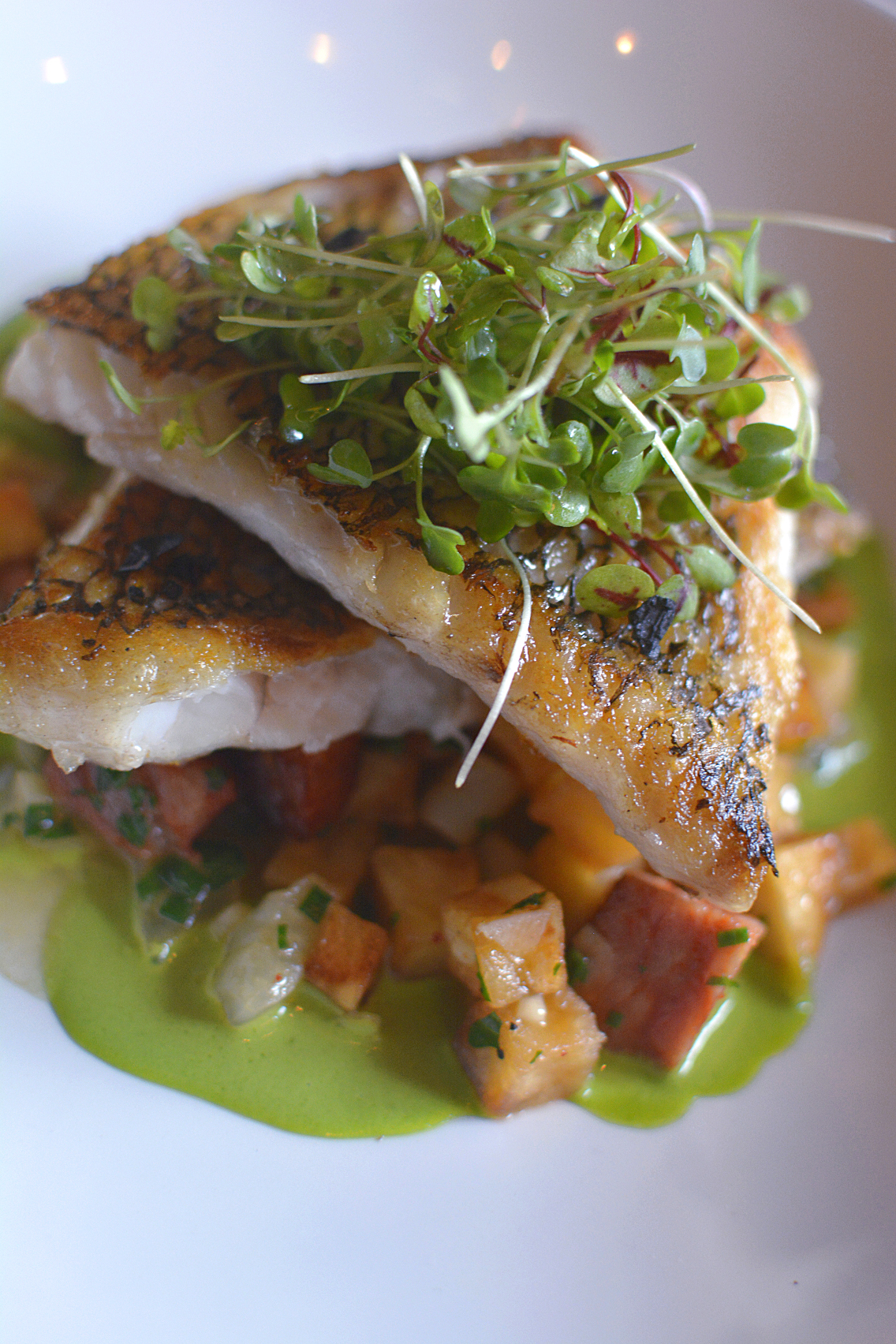 Presidio Chicago Wild Black Bass with Potato Chorizo 3