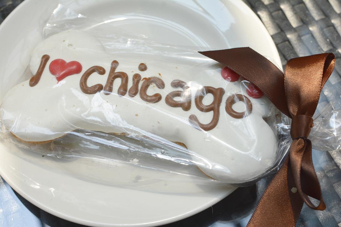 freestyle restaurant Dana Hotel Chicago Dog Patio 1