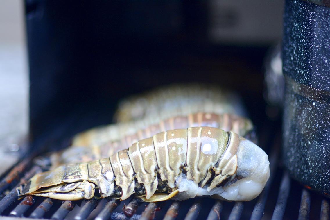 Lobster Boil 17