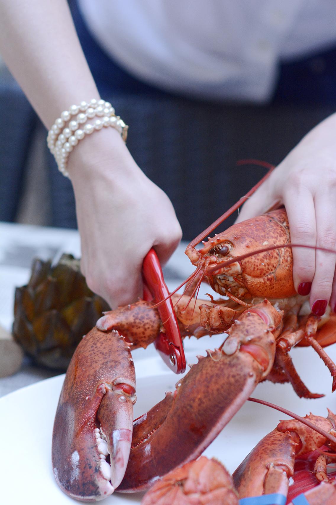 Lobster Boil 29