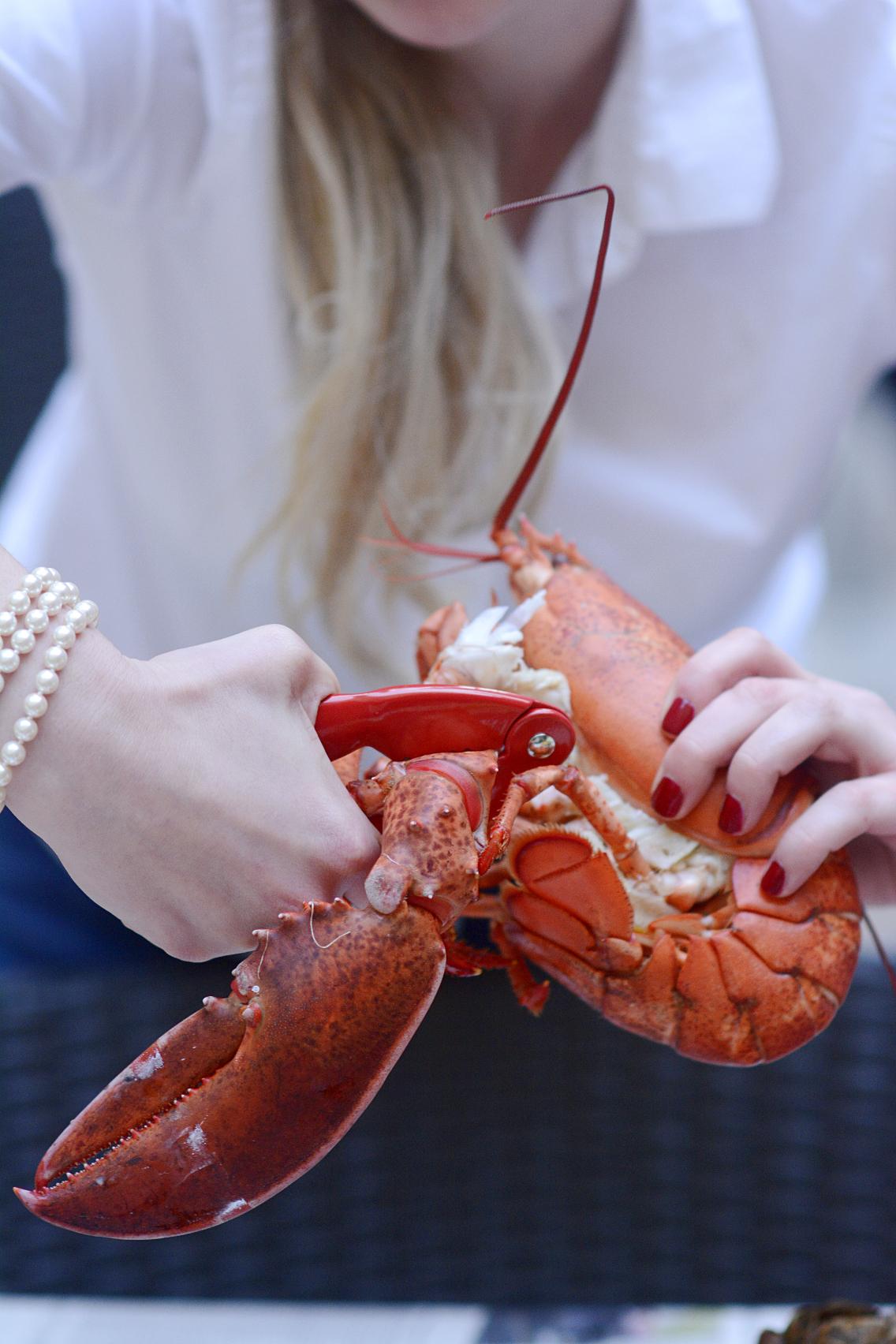 Lobster Boil 31