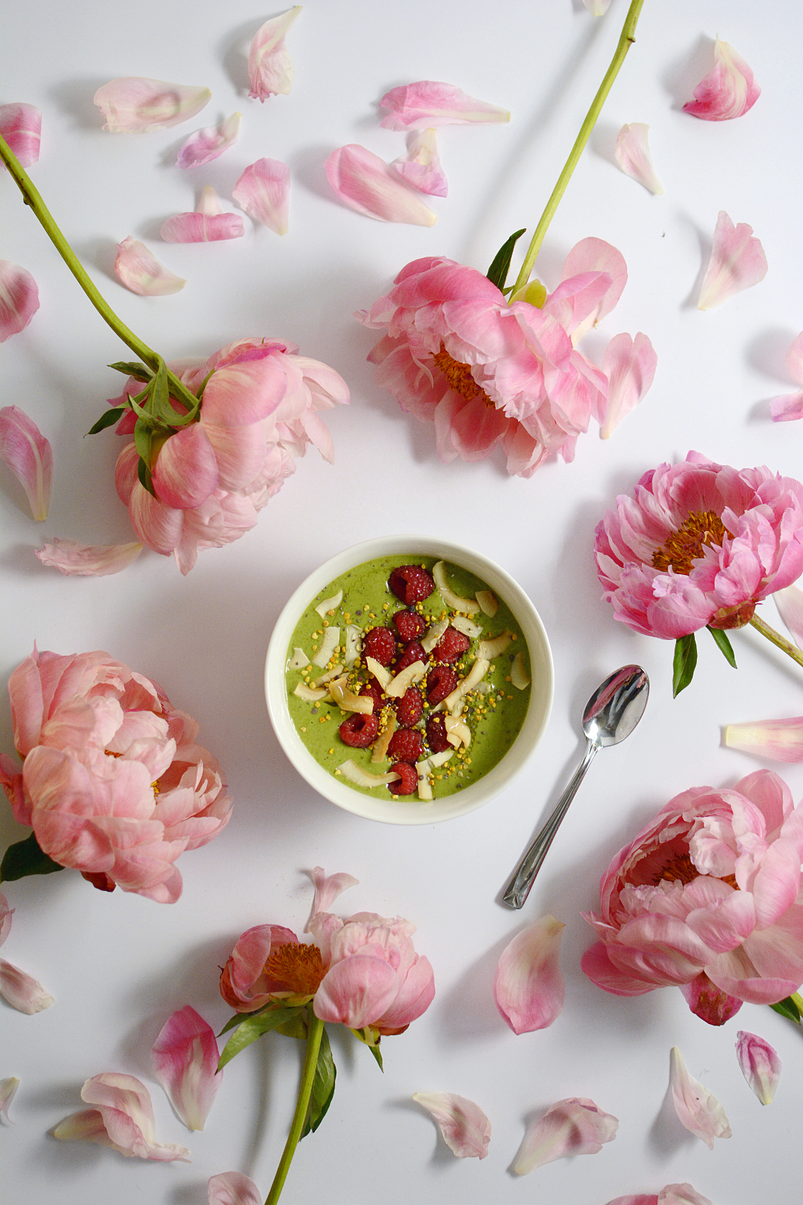 Matcha Green Tea Protein Smoothie Bowl 6