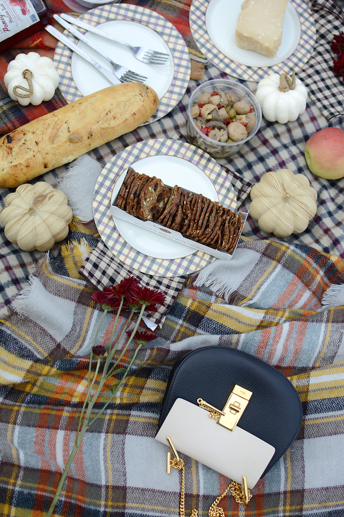 Fall Picnic with Chloe Drew Crossbody 8