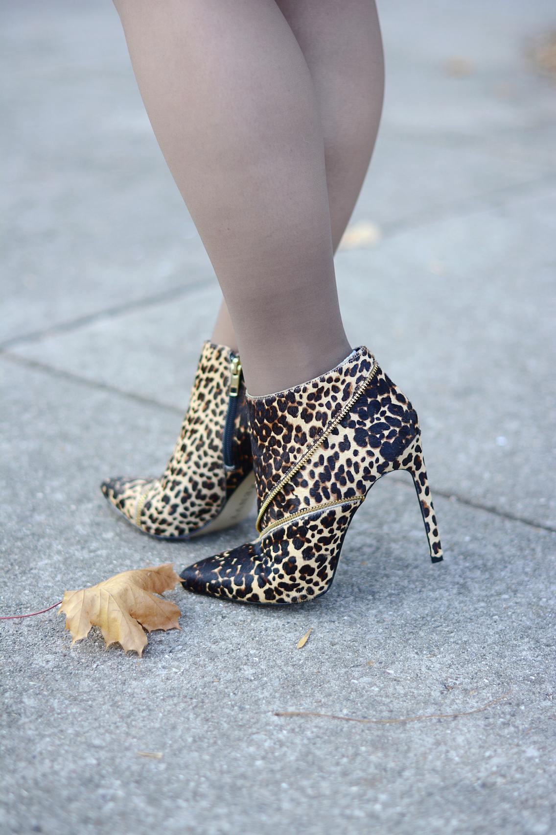 Barbour Bonnington Forever 21 Cheetah Booties