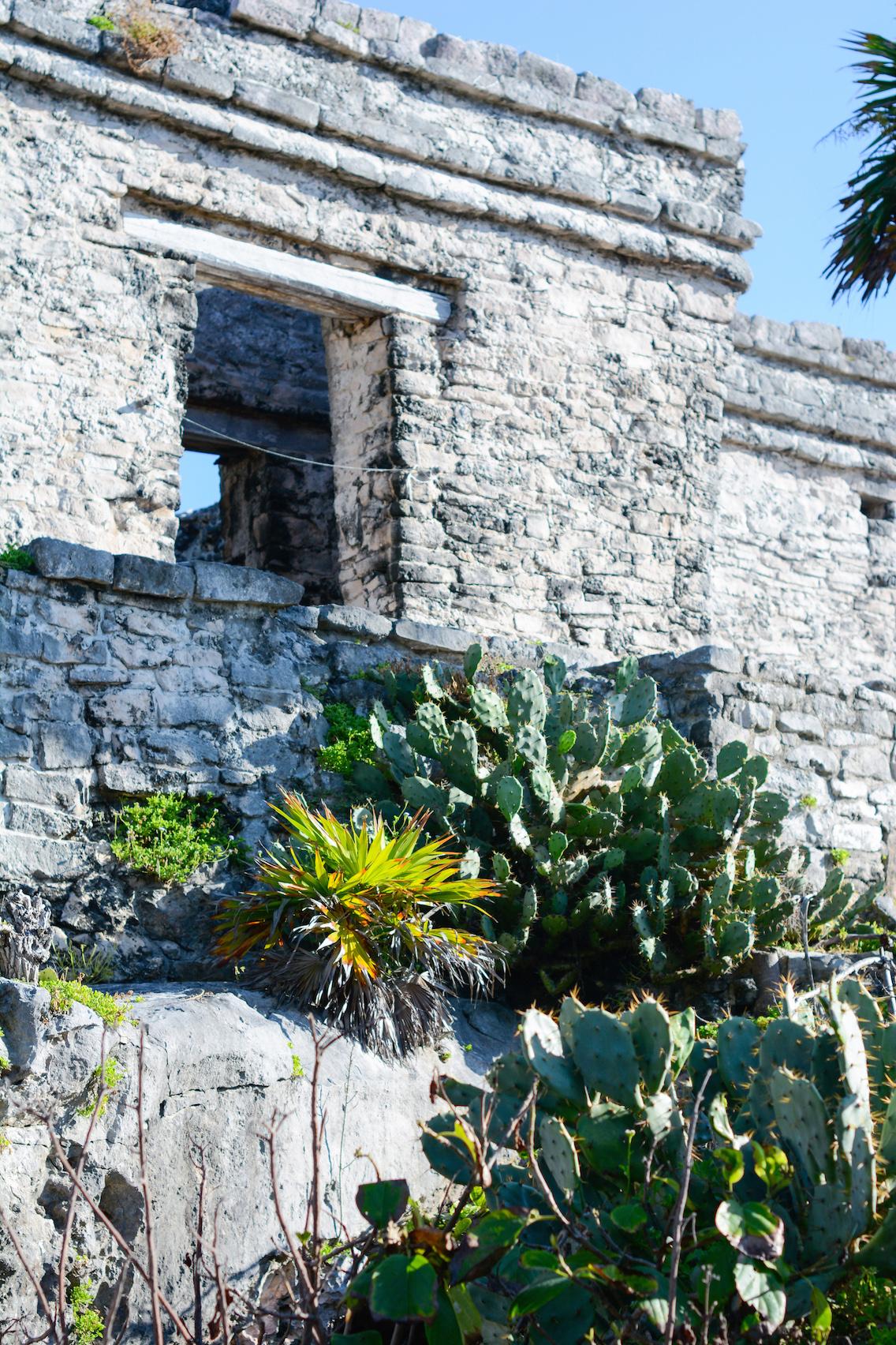 Tulum Mayan Ruins Mexico 60