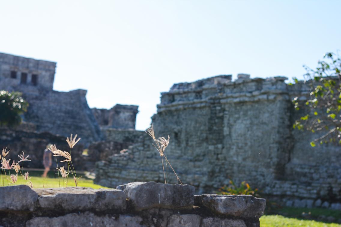 Tulum Mayan Ruins Mexico 9