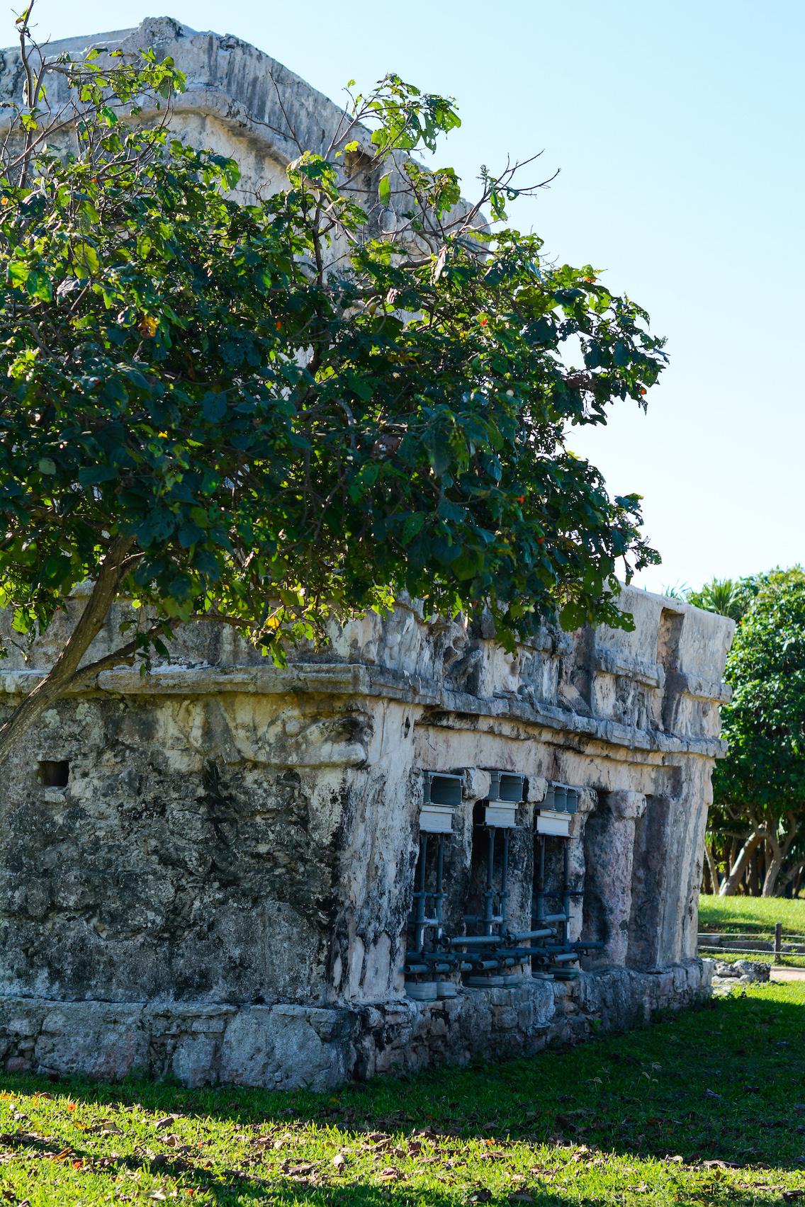 Tulum Mayan Ruins Mexico 10