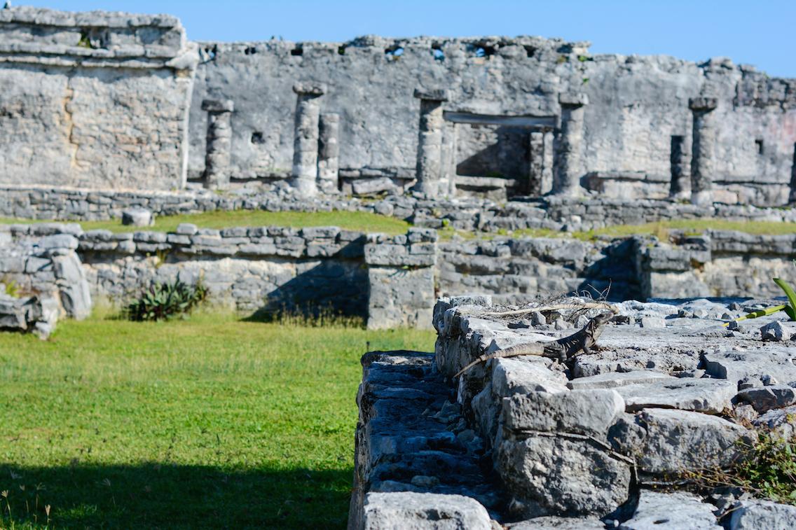 Tulum Mayan Ruins Mexico 17