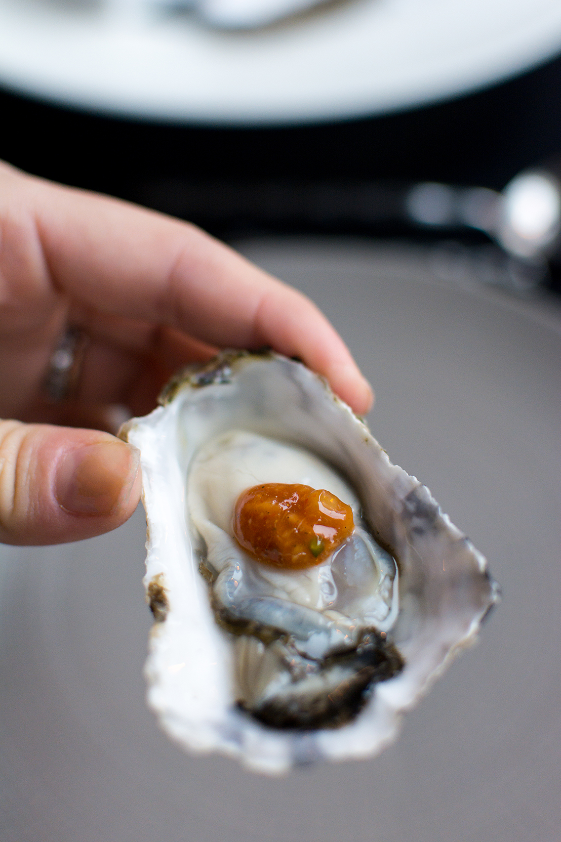 An ode to oysters cheesecake sed bona for Gt fish and oyster chicago