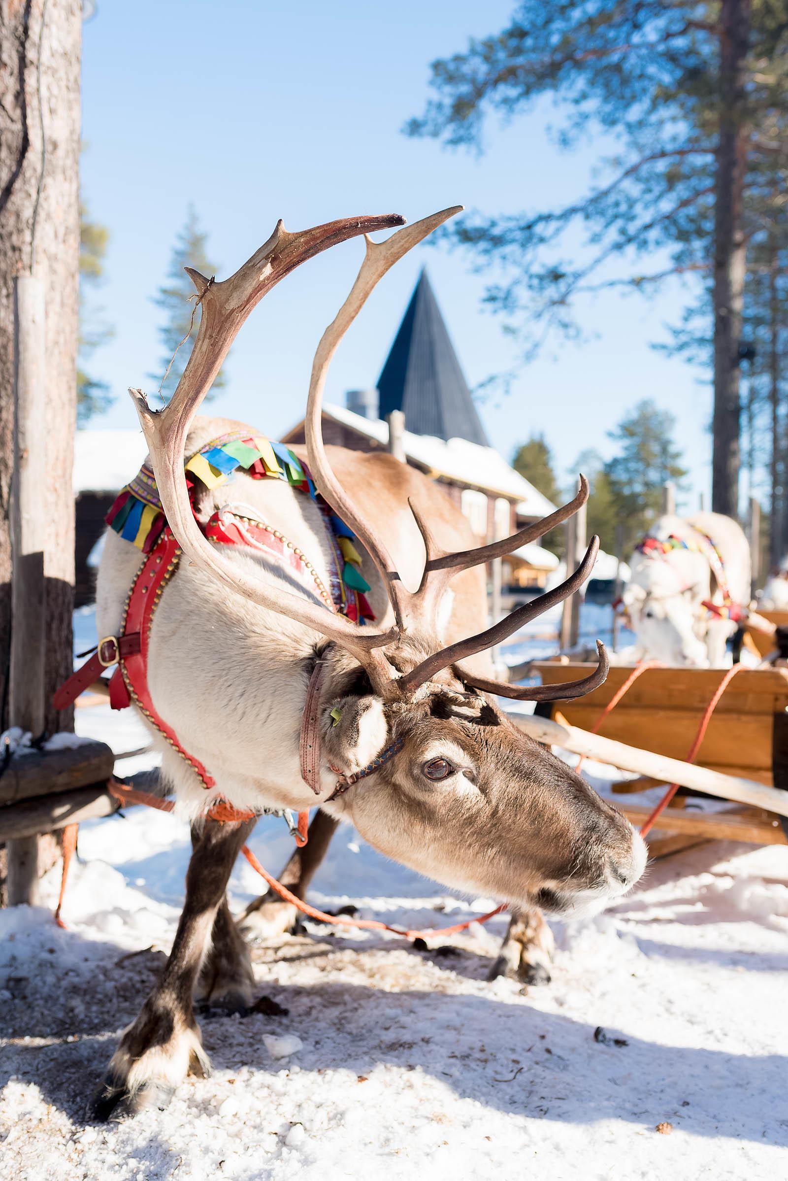 Rovaniemi Finland Santa Claus Village Arctic Circle