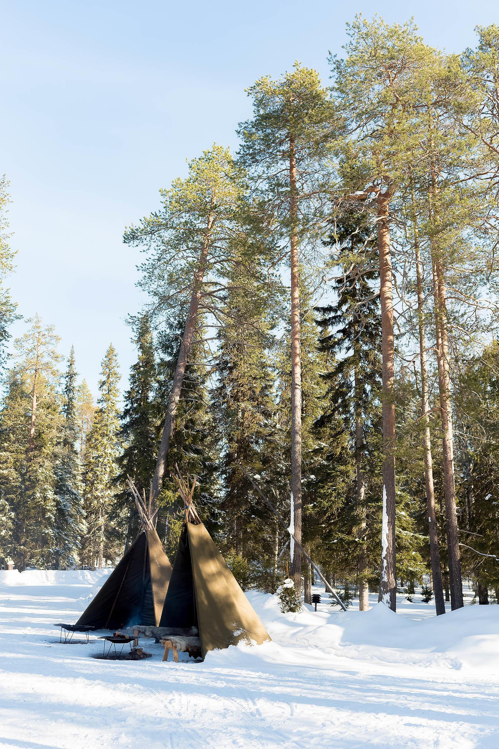 Rovaniemi Finland Lapland Hotels Bear's Den