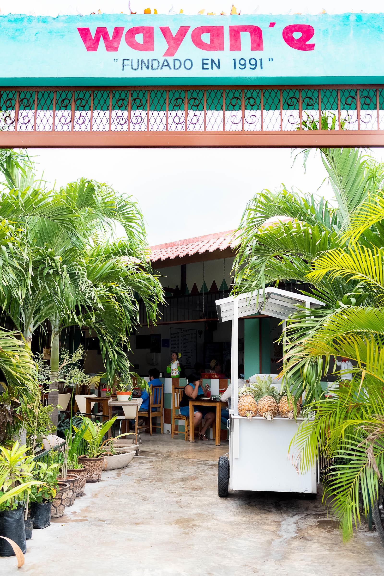 Wayan'e, Mérida, Restaurant, Tacos, Yucatán, Mexico