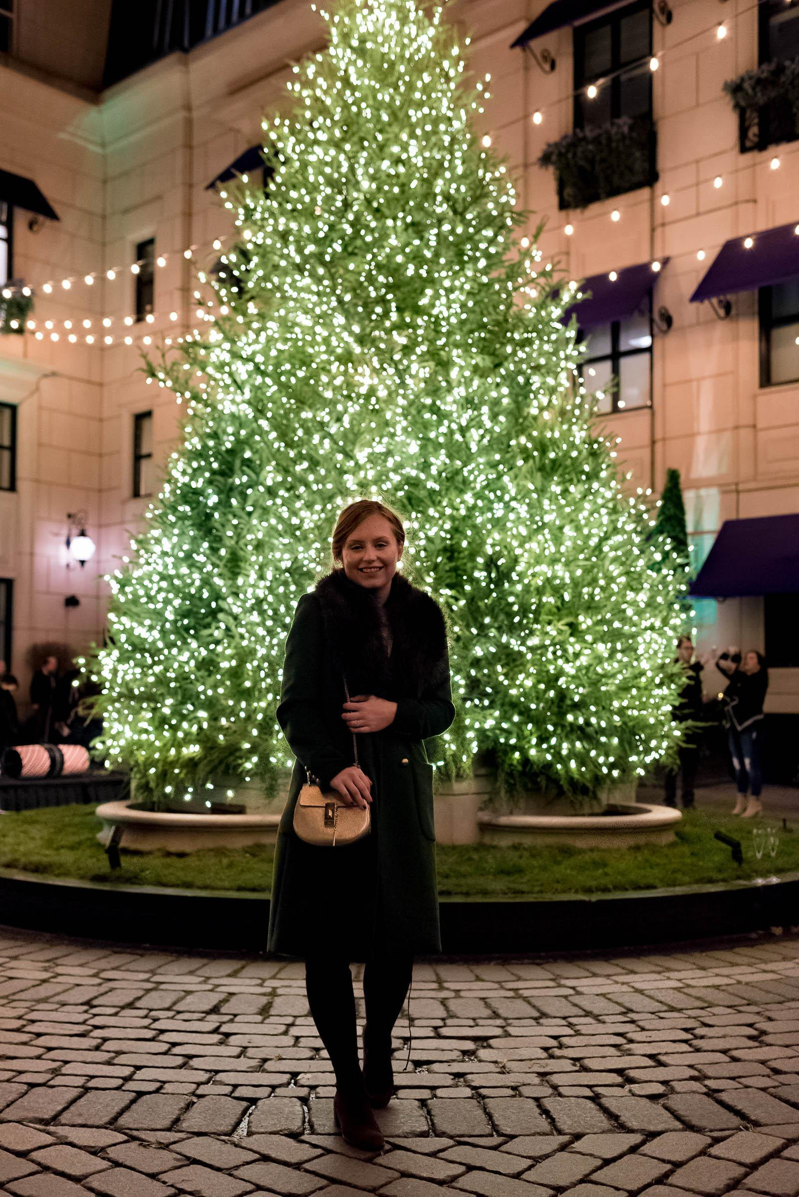 Waldorf Astoria Chicago Christmas Tree Lighting 2017
