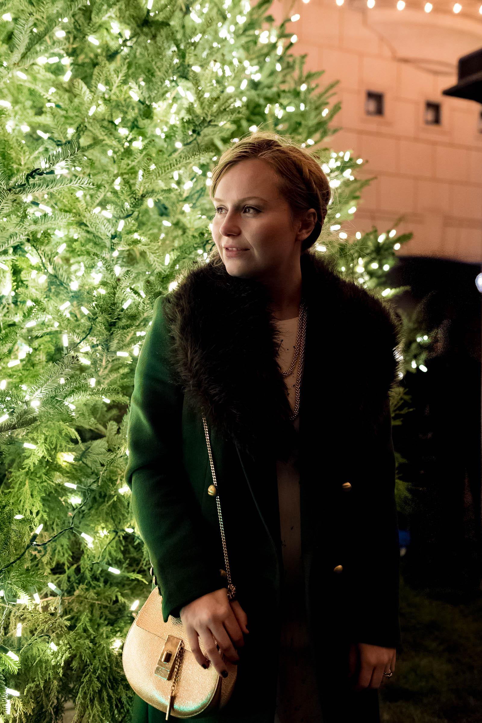 Waldorf Astoria Chicago Christmas Tree Lighting 2017