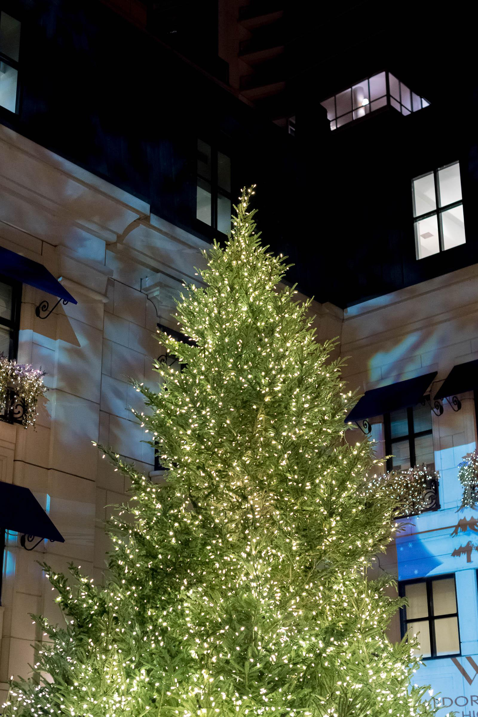 Waldorf Astoria Chicago Christmas Tree Lighting 2016