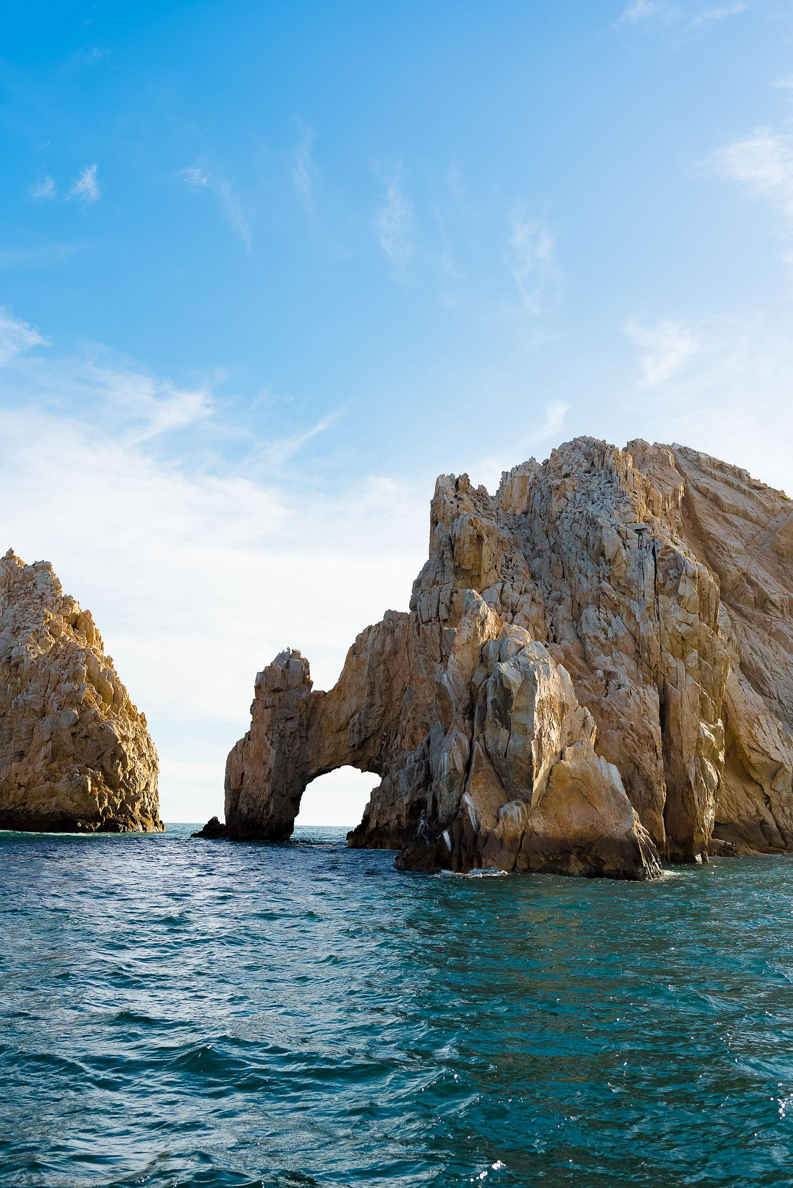 Los Cabos Mexico Whale Watching