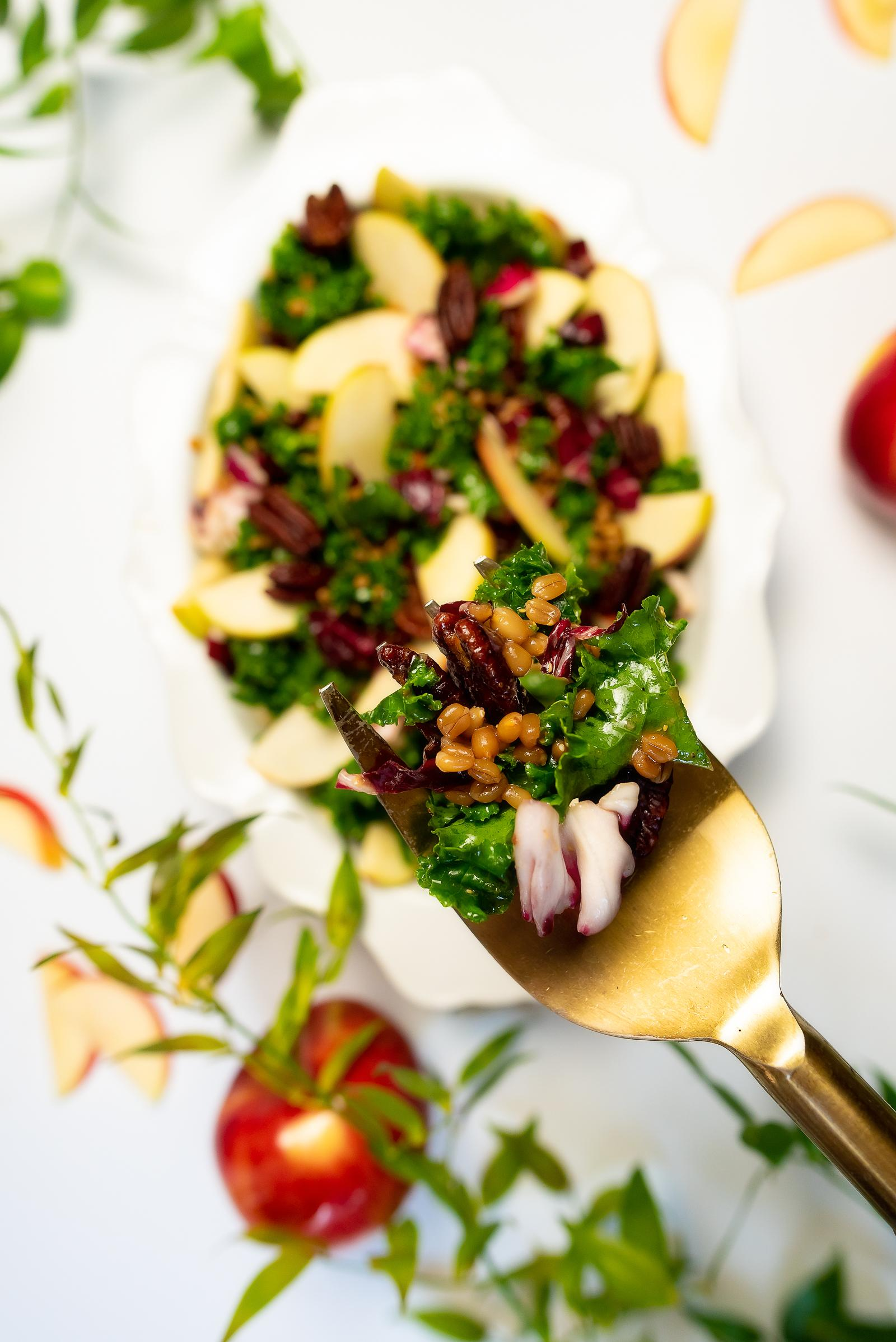 Stemilt Rave Apple Salad with Kale, Roasted Pecans, Wheatberries, Cabbage and an Apple Cider Mustard Vinaigrette Recope
