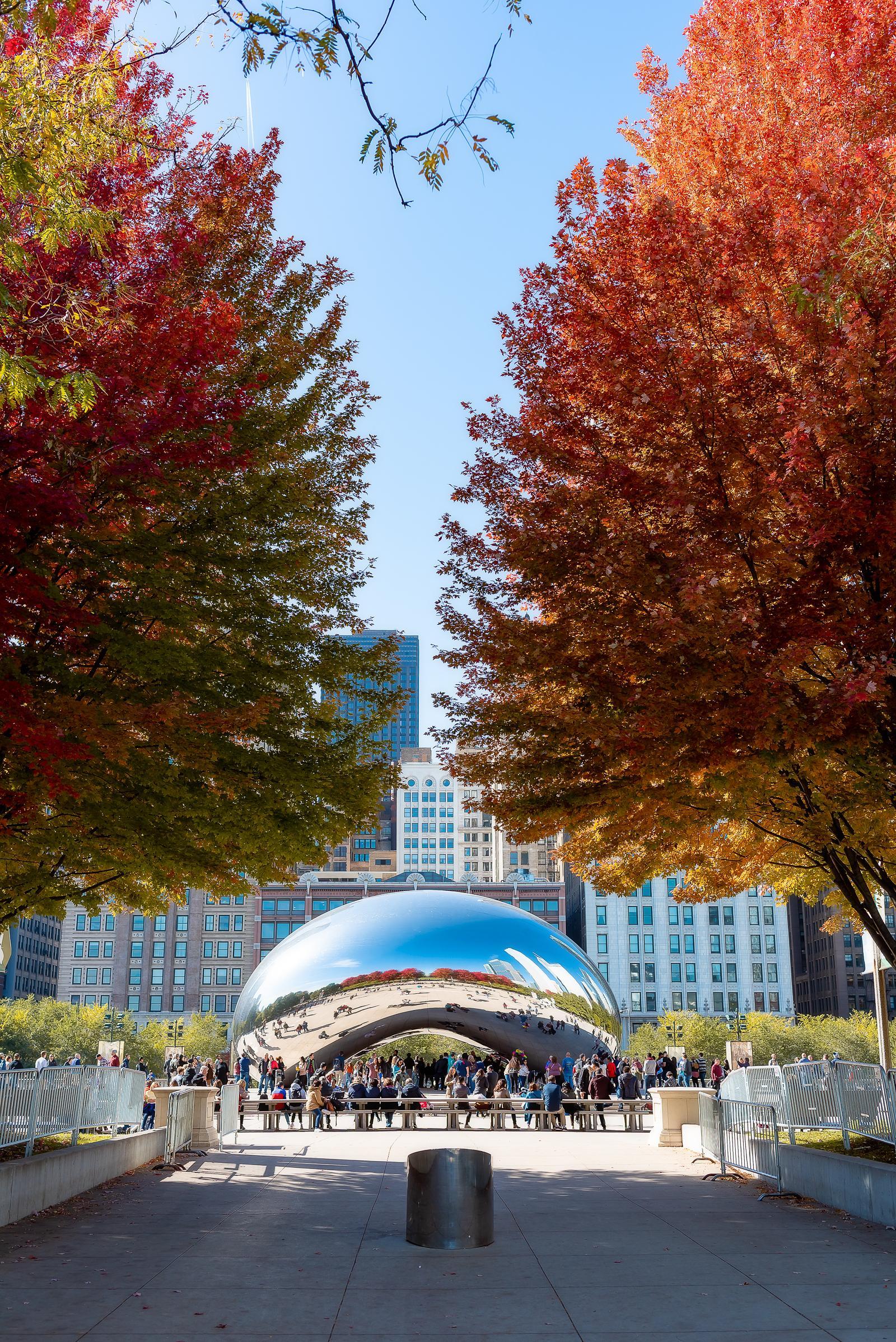 Millennium Park Chicago Fall Leaves