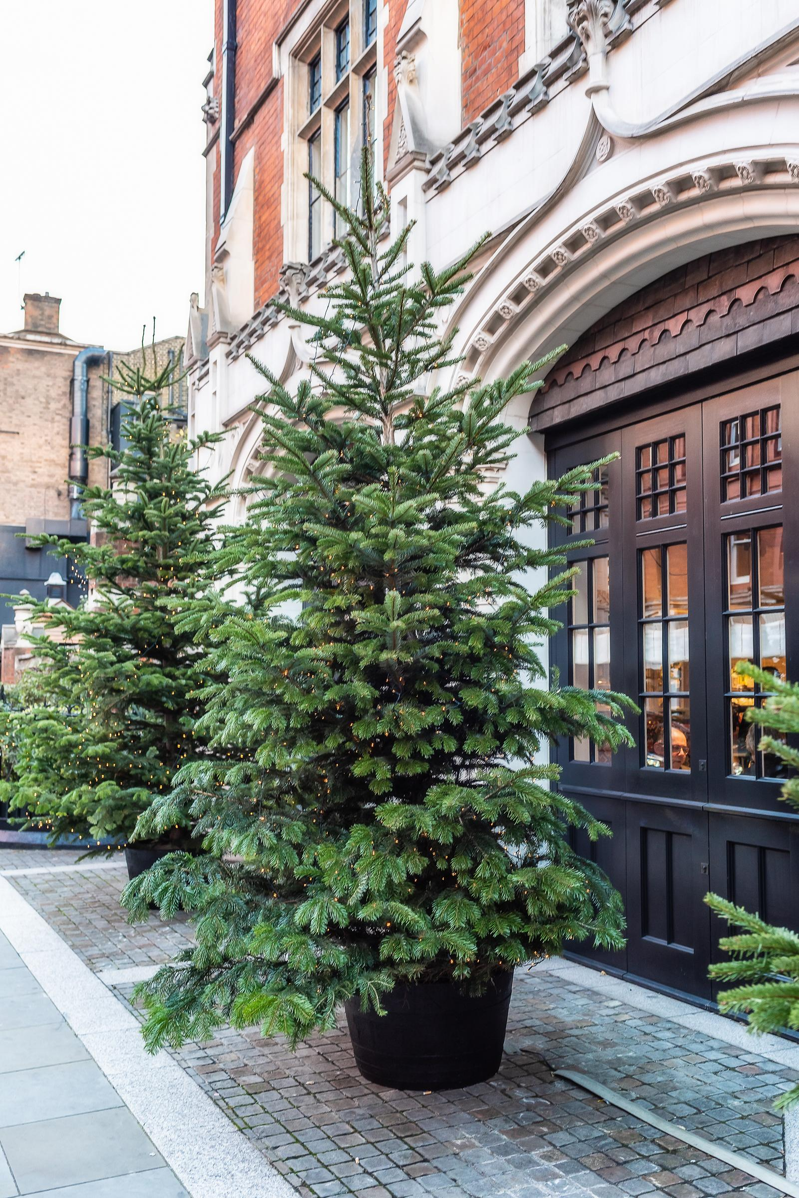 Chiltern Firehouse London December 2018
