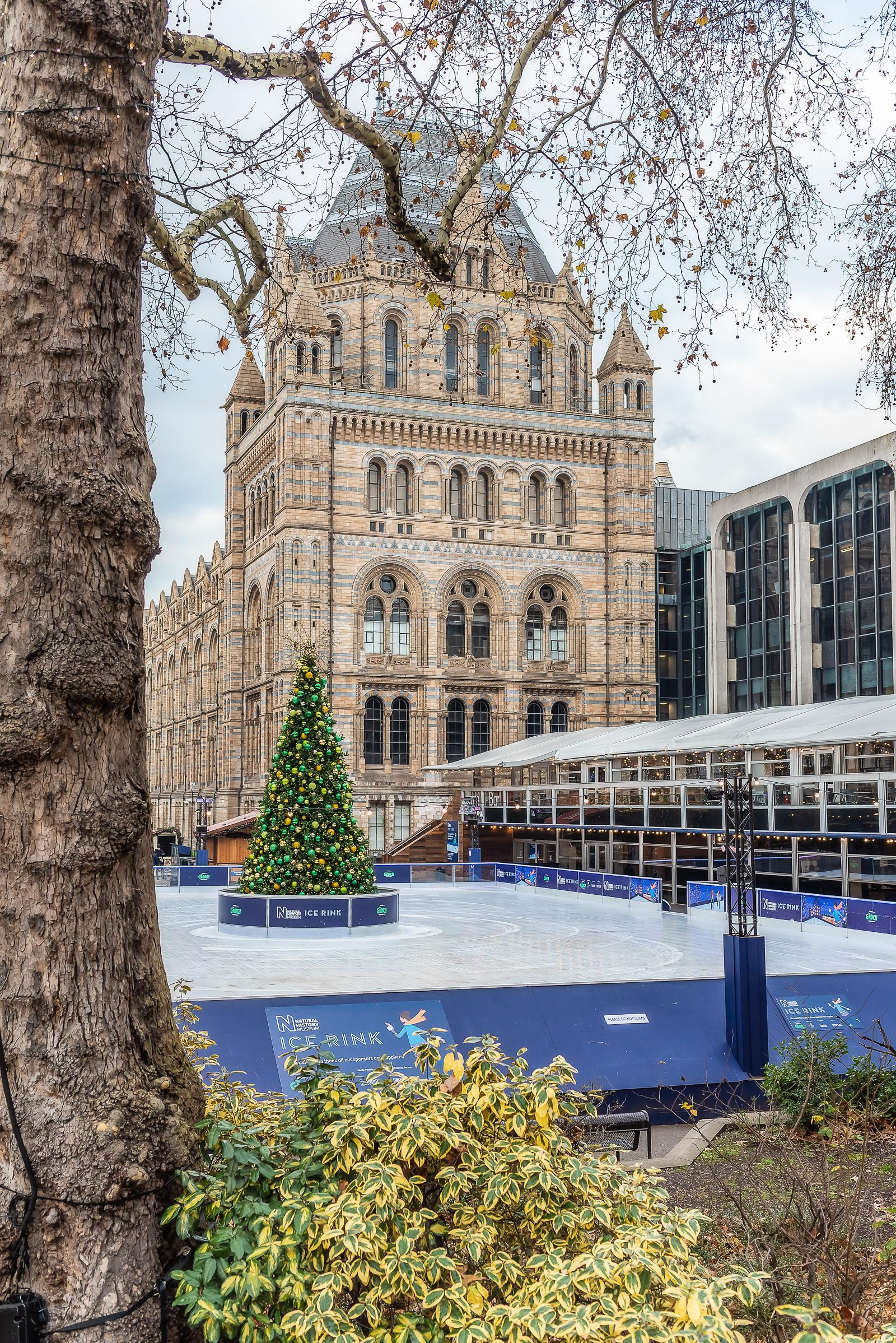 Natural History Museum London December 2018