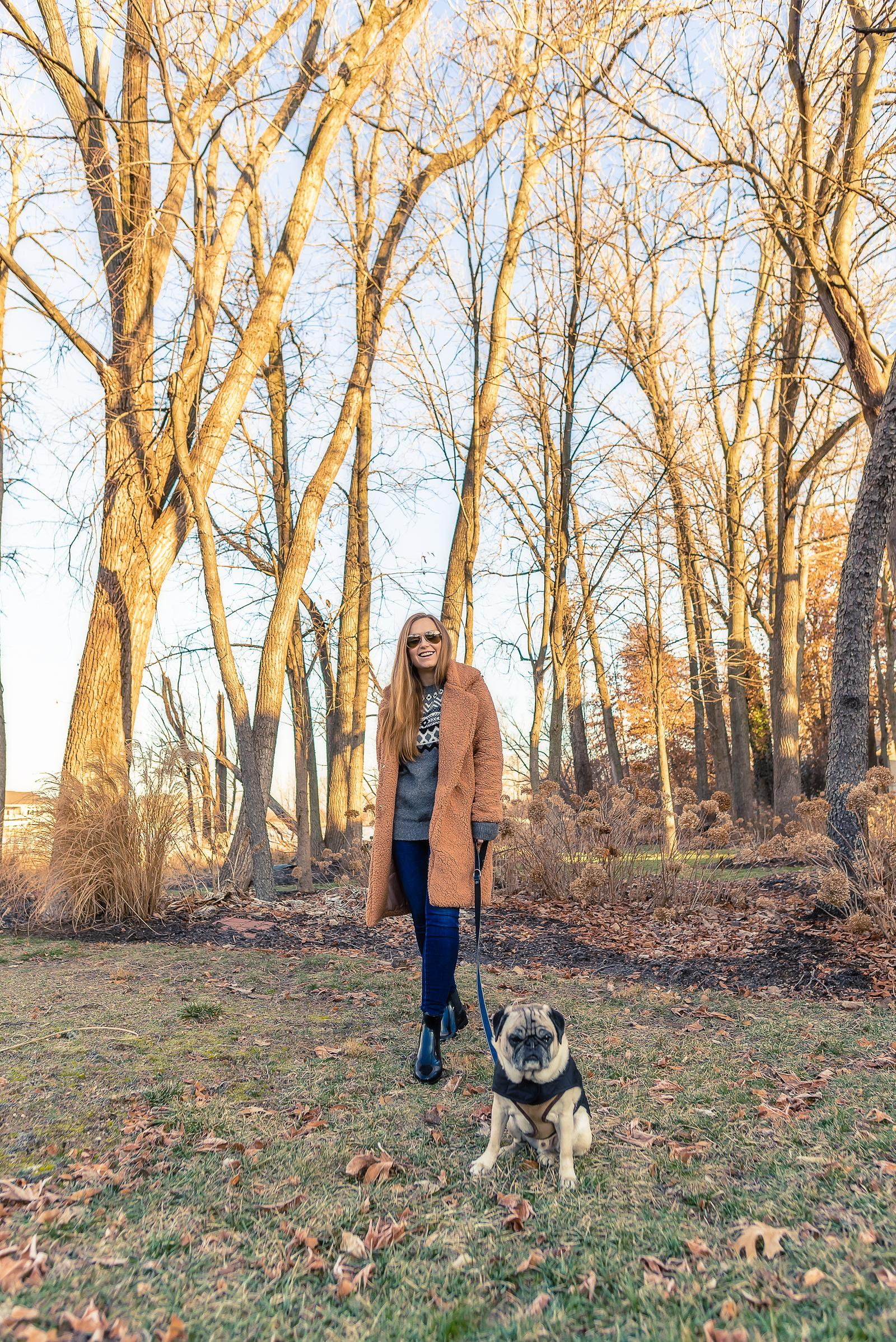 Healthy Winter Dog Tips